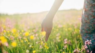 Mujer en un campo de flores silvestres